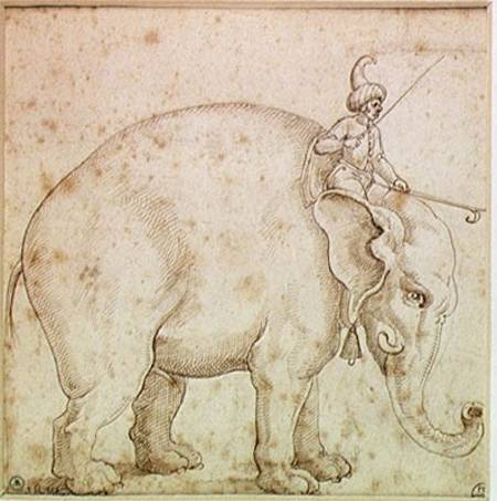 Elephant_hanno_mahout_pen_ink_hi